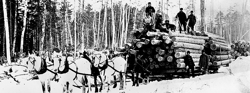 1800s Lumber Delivery
